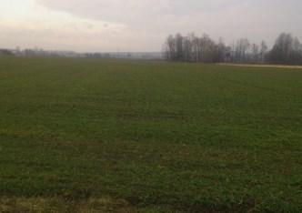działka na sprzedaż - Iwanowice, Poskwitów